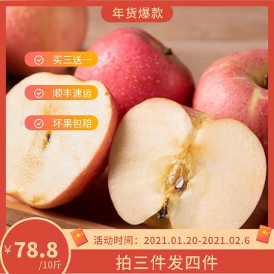 【买三送一】内蒙古宁城 富硒苹果 8斤/10斤装