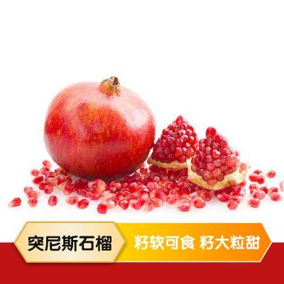 四川会理 突尼斯软籽石榴 5斤/8斤