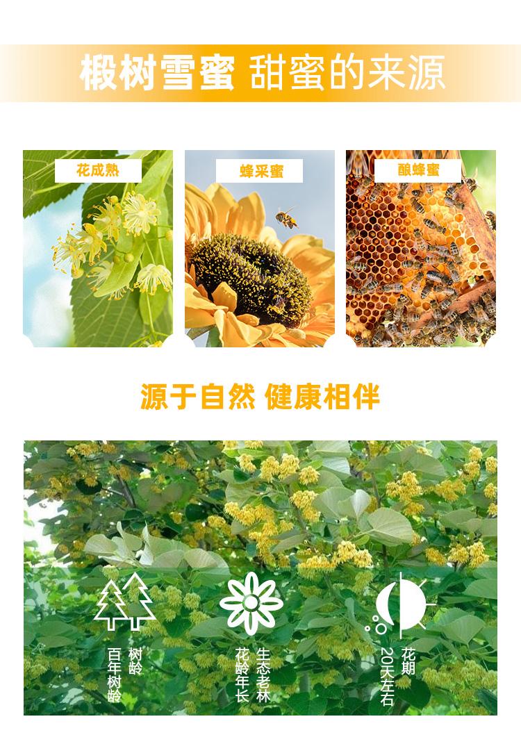 蜂蜜_05.jpg