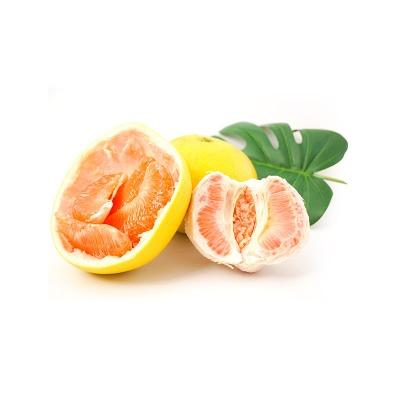 江西赣州 樱花柚 2个特惠装